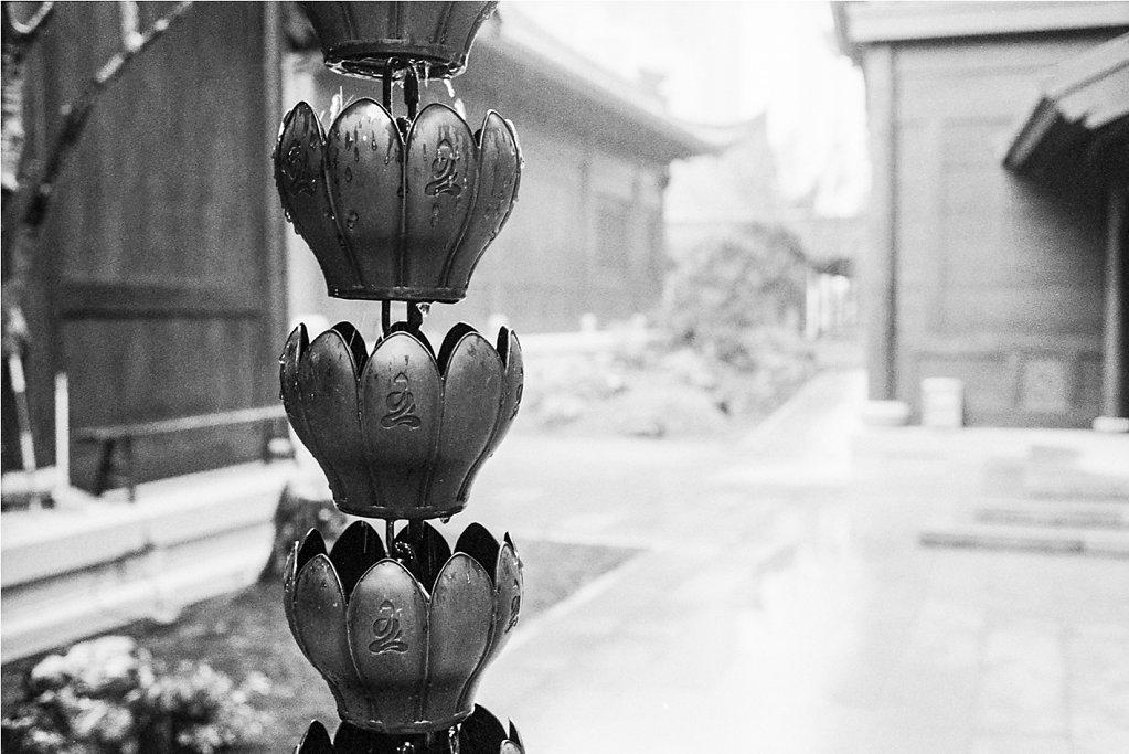 Shanghai-22.jpg